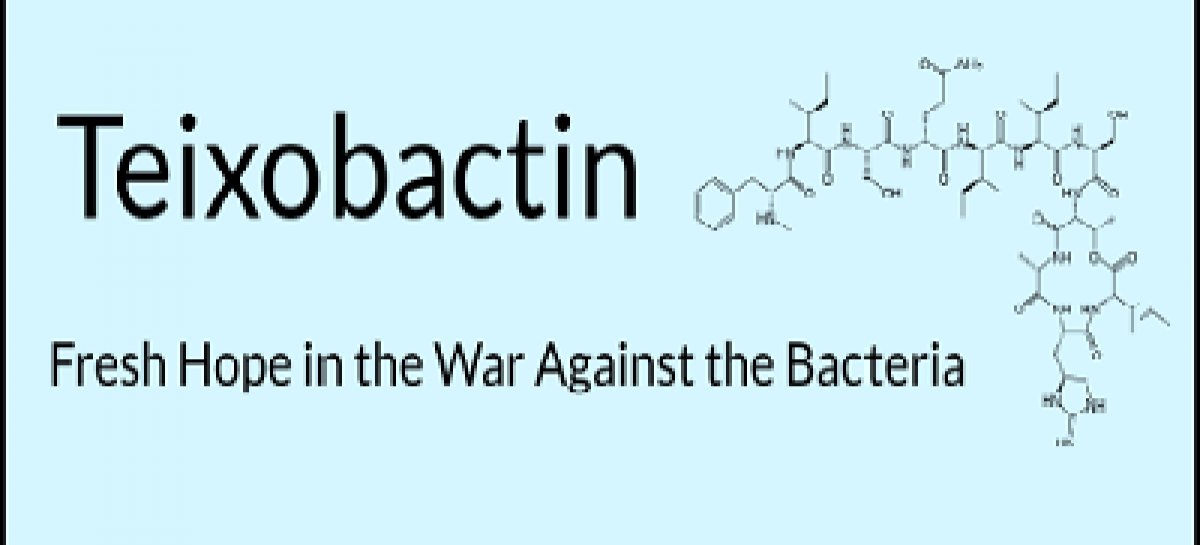 Teixobactin: New Antibiotic against Drug Resistant Bacteria