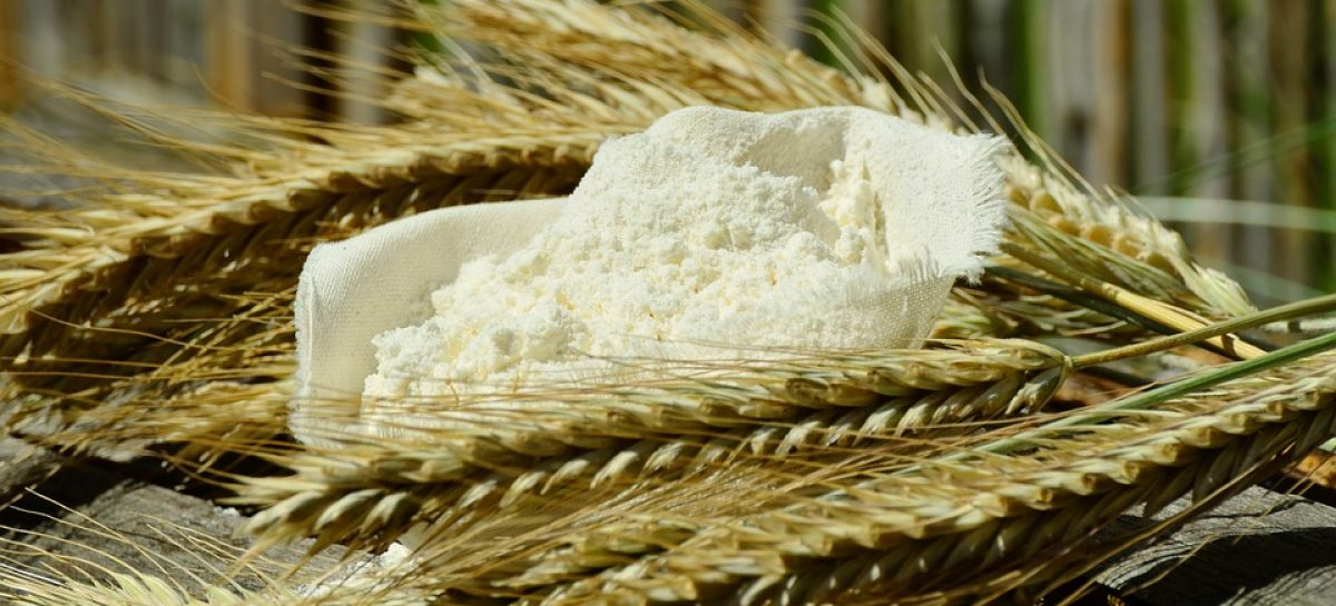Mutilgrain flour basic information you need…