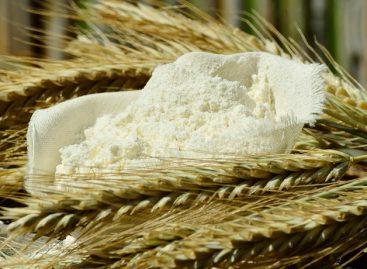 Mutilgrain flour basic information you need…