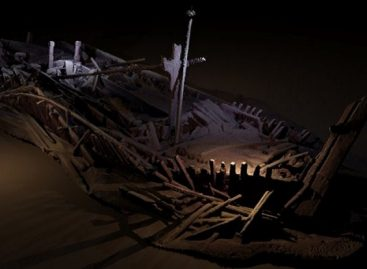 5 Archaeology news that have amazed the world